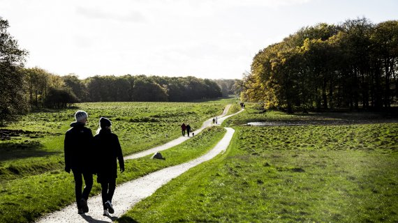 Jægersborg Dyrehave 1 fotokreditering: Parforcejagtlandskabet i Nordsjælland
